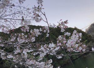 平成最後まで残り1ヶ月!!